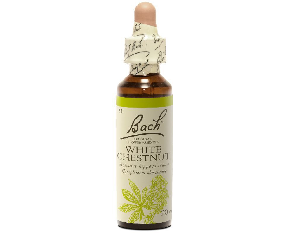 FLEUR DE BACH WHITE CHESNUT (MARRONNIER BLANC) 20ML